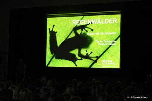 2019-02-08-Regenwaelder-DSC_9730